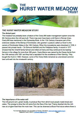 The Hurst Water Meadow Trust - History of the Trust